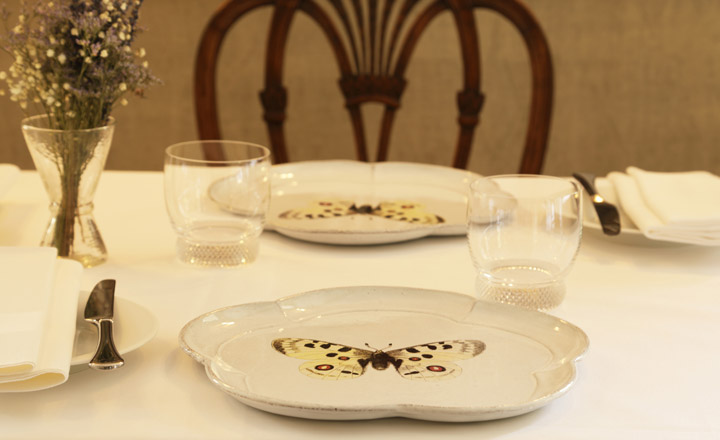 Butterfly plates on dining table